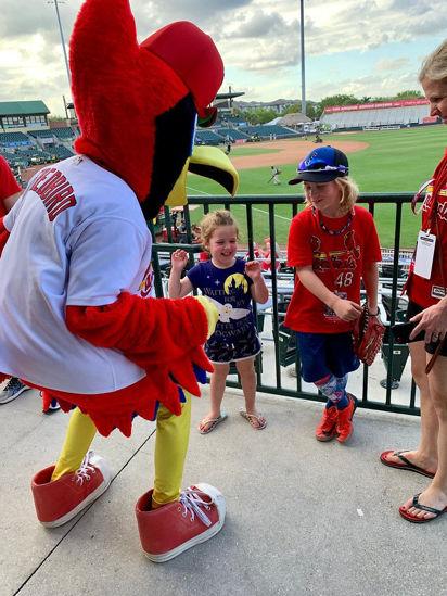 Cardinals Spring Training 2022